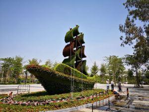绿雕造型的制作过程