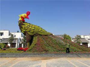 台儿庄古城五色草造型