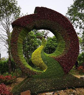 泰兴园林五色草雕塑